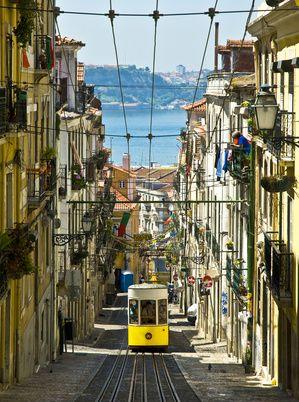Portugal Le Moci Actualite Du Moci
