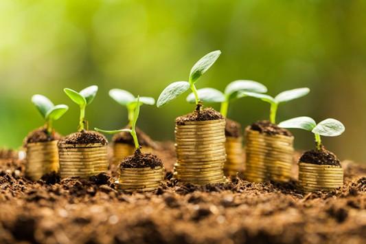 Financements / Export : les propositions de Bercy pour décarboner sa politique