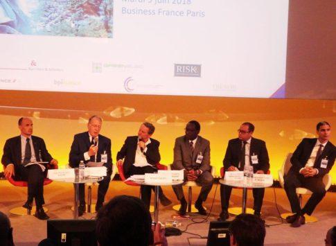 France / Nigeria : E. Macron va visiter un grand pays du business africain