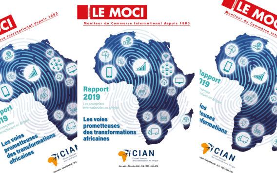 Rapport CIAN 2019 – Les entreprises internationales en Afrique