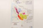 Vin / Bordeaux : l'Interprofession alerte sur la déconsommation